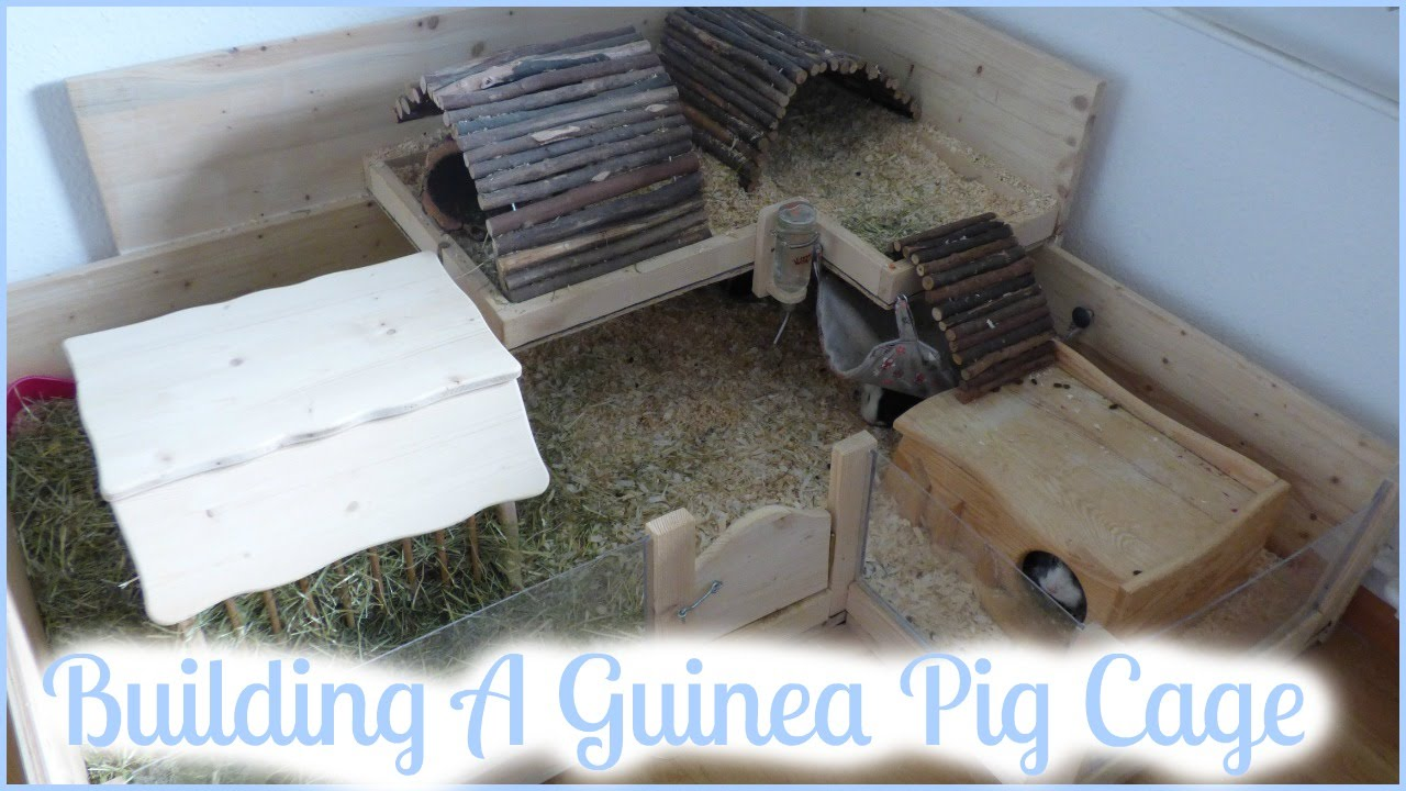 How to build your own wooden guinea pig cage diy cage for How to make a guinea pig cage