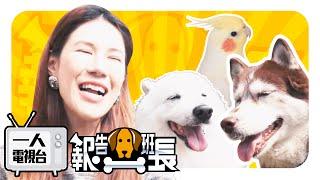 【一人電視台 Season1 EP.9】報告狗班長之~狗才是班長!!!