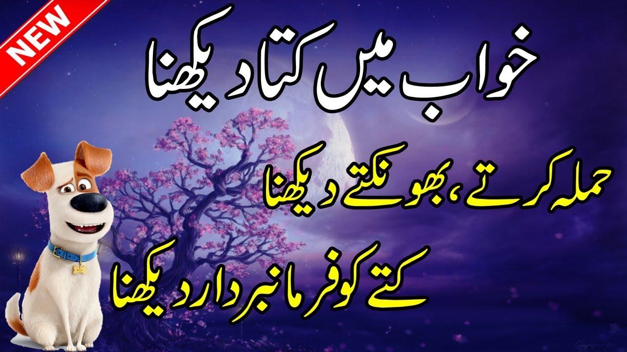 Khwab Mein Kutta Dekhna Ki Tabeer In Urdu-Dog Dream Meaning In  Hindi--Khawab Ki Tabeer