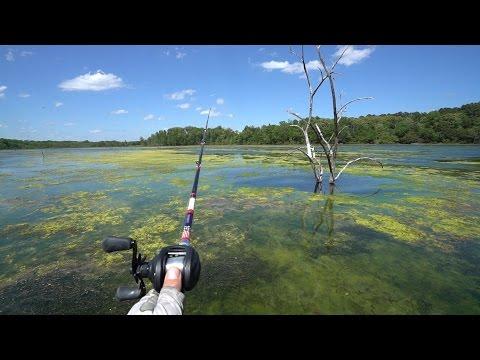 Fishing the NASTY Green Slime!!