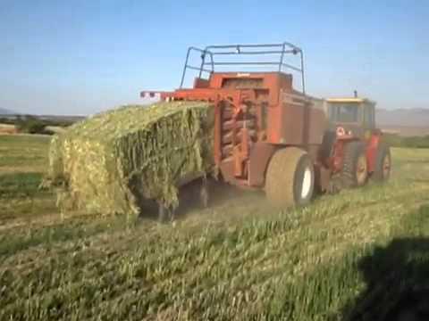 Large square hay  baler in action- St. David Arizona