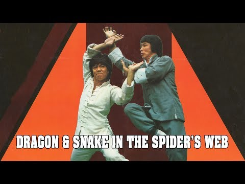 Wu Tang Collection - Dragon & Snake In The Spider's Web