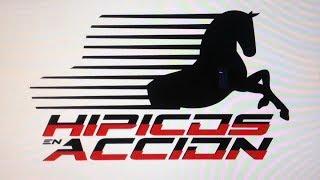 HIPICOS EN ACCION DOMINGO 03/03/2019 LA RINCONADA