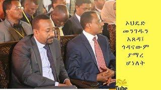 ETHIOPIA ኦህዴድ መንገዱን አጸዳ፤ ጎዳናውም ያማረ ሆነለት