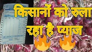 onion market report किसानों को रुला रहा है प्याज🔥🔥🔥🔥