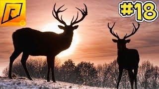 10 патронов = 10 оленей (везем свежину на продажу) - CRMP [Radmir rp] #18 (серия)