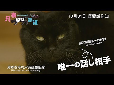 只有貓咪知道 (Only the Cat Knows)電影預告