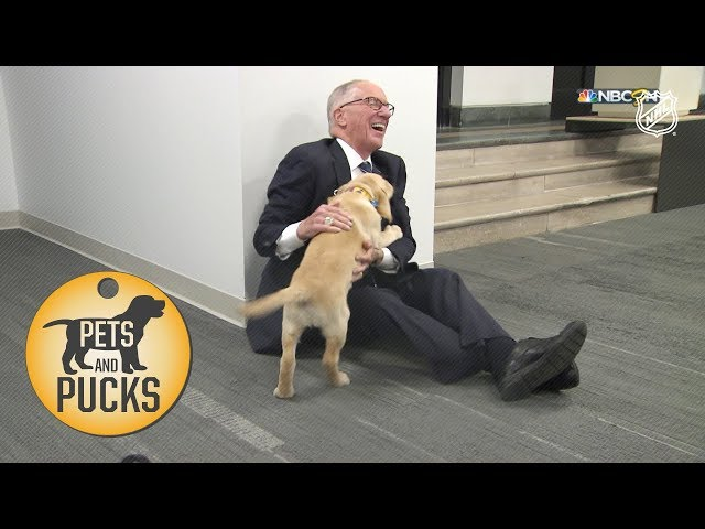 Doc meets Barclay, the Blues' office puppy