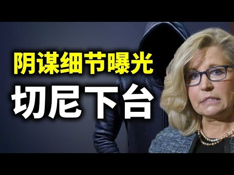 亨特拜登身边的色情女间谍照片曝光;切尼下台,媒体透露她针对川普的阴谋细节;刘鹤真的反习近平吗?亚利桑那审计更新;中国将失去世界工厂地位(政论天下第420集 20210509)天亮时分