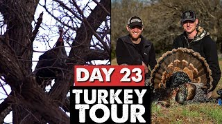 GETTING AGGRESSIVE, 10 YARD BOW KILL! - Public Land Turkey Tour Day 23
