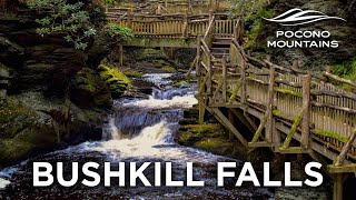 Pocono TV Network | Bushkill Falls | Fall