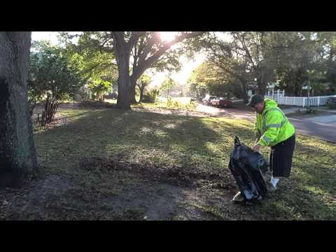 Leaf Cleanup  March 23