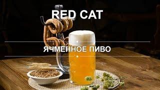 Ячменное пиво(, 2016-10-29T07:31:32.000Z)