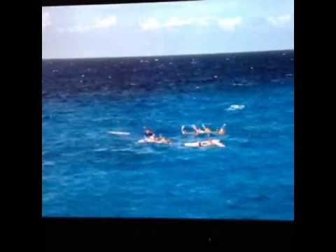 Cyclone 1978 Rene Cardona Jr shark attack clip