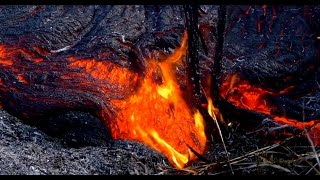 1/18/2015 -- Puna Lava Flow heading towards Highway -- New HD video close-up
