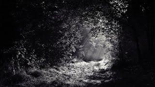 Melancholic Dark Neofolk - NEMUER - Night of Uncertainty