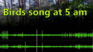 Repeat youtube video Relaxing singing birds (morning song at 5 am)