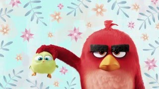 Happy Mothers Day From The Angry Birds Movie *Cute