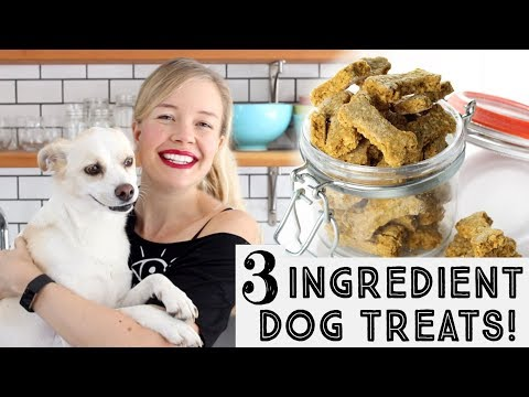 Pumpkin & Peanut Butter Dog Treats - Just 3 Ingredients!