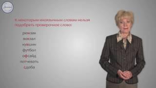 Русский 10 Звонкие и глухие согласные в корне  Непроизносимые согласны