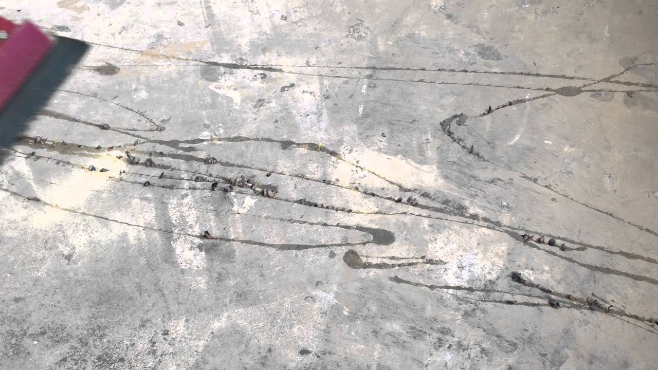Removing Carpet Glue from Concrete - YouTube