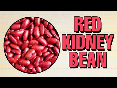 How To Pronounce Red Kidney Bean À¤° À¤œà¤® Pronunciation In Hindi Grain Hd Lehren Kids Youtube