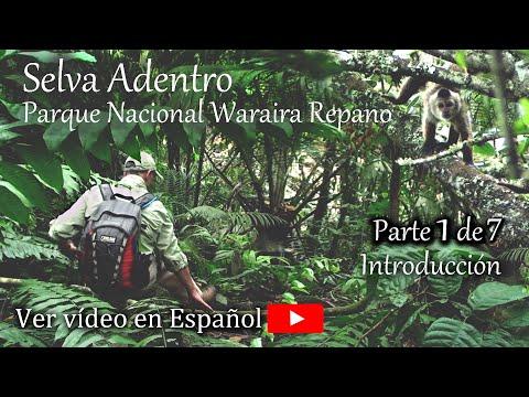 Introducción al Documental Selva Adentro Parque Nacional Waraira Repano (El Avila)