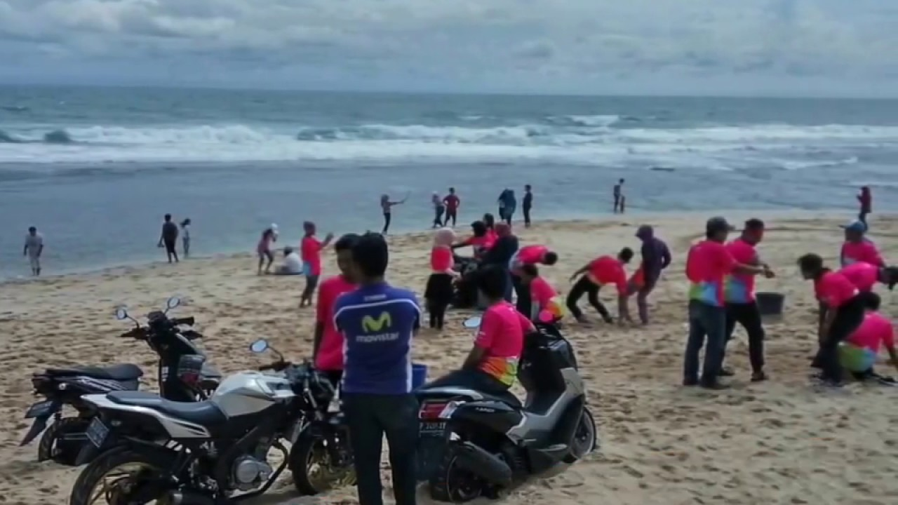 Om.. telolet om... with Yamaha goes to Sepanjang Beach (2 ...