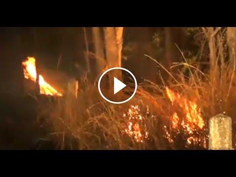 เรื่องเล่าเช้านี้ หมอกควันไฟป่าลำปางทะลุมาตรฐาน จนท.ดับไฟป่าดอยพระบาท พลัดตกเขาเจ็บ