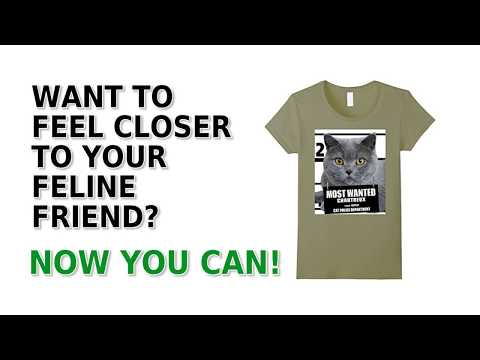 Chartreux Cat T-Shirt - Men's, Women's, Kid's - Navy, Slate, Yellow