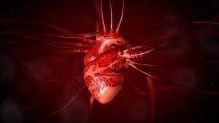 101科學教室:心臟《國家地理》雜誌