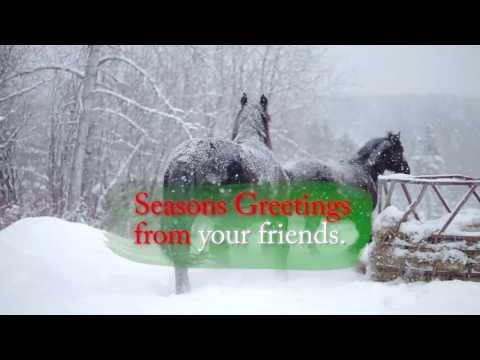 2016 American Movie Holiday Greeting Card