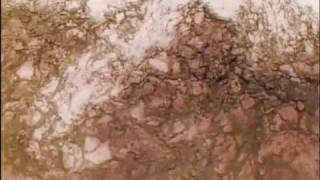 Senser-Fairytail Dj AWE video
