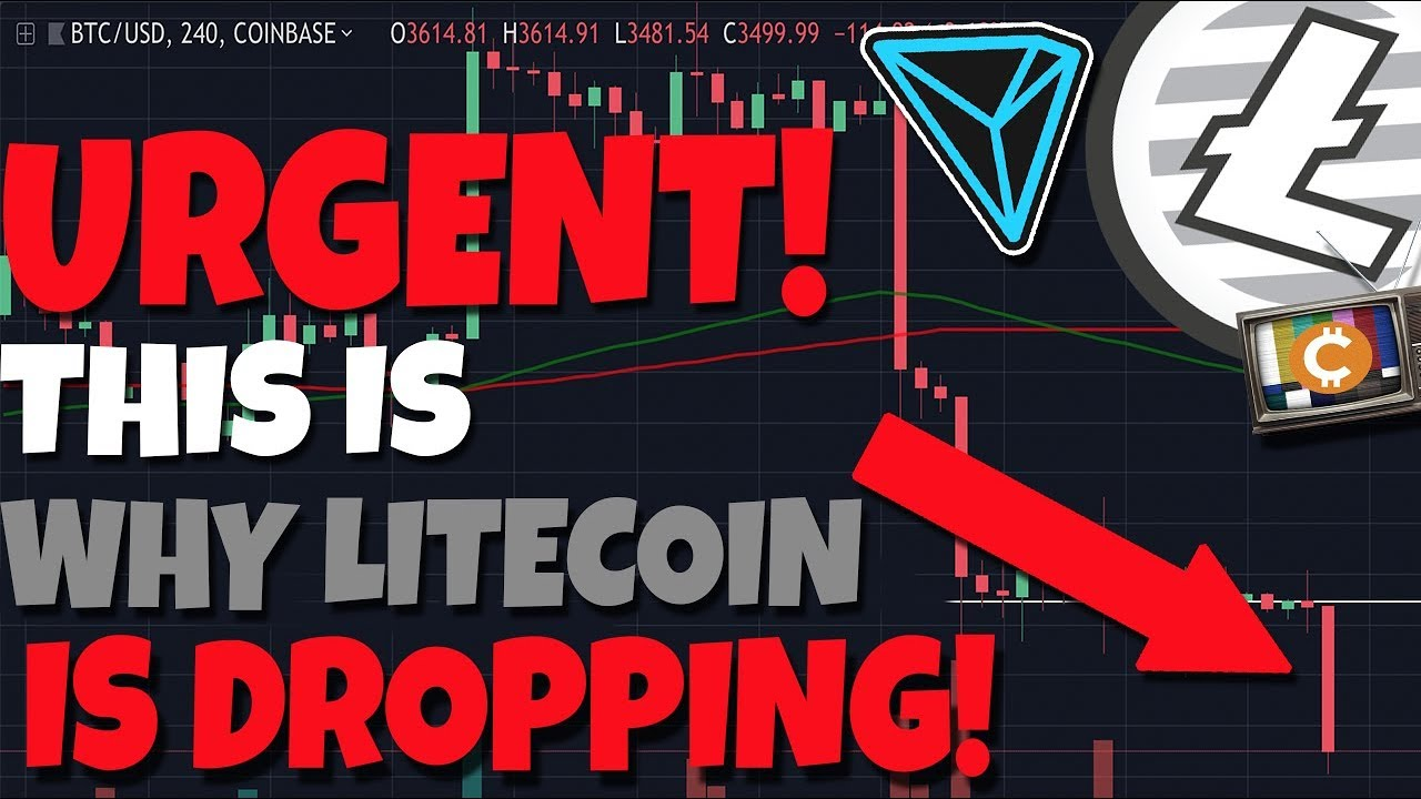 URGENT: This Is Why Litecoin Is Dropping - BitTorrent & Tron Talk