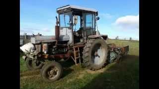 Трактор т-28 копает картофель