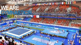 FULL REPLAY - 2014 Artistic Worlds, Nanning (CHN) - Apparatus Finals - Day2