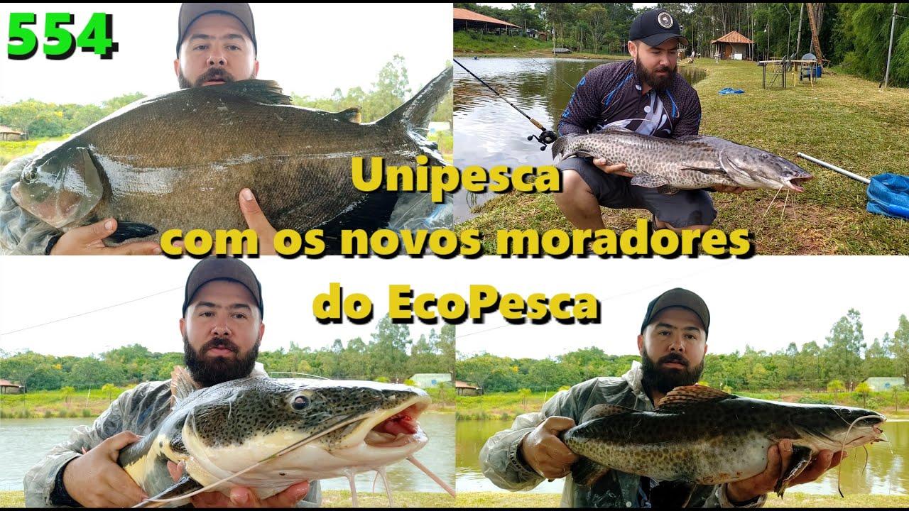 Unipesca - Pescaria nos lagos 3 e 5 - Fishingtur na TV 554