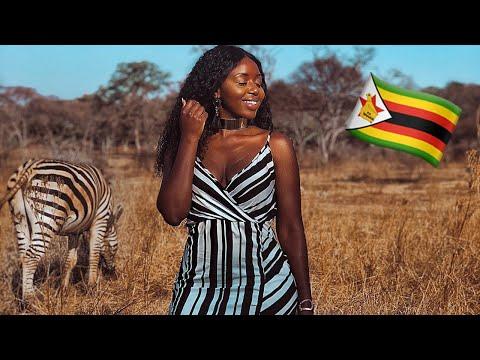 ZIMBABWE VLOG! SAFARI, BUSHMAN ROCKS, MUREWA, DOMBOSHAVA