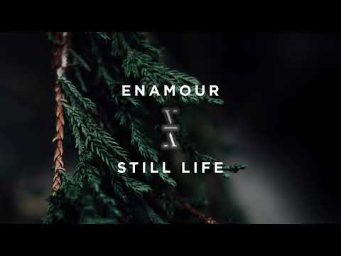 Enamour - Still Life