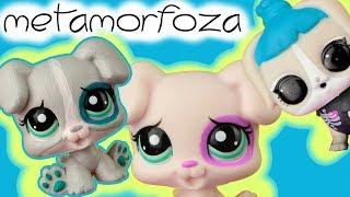 Littlest Pet Shop  Metamorfoza zwierzaków LPS  LOL Surprise