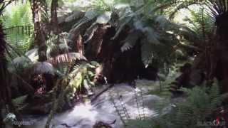 Junee Cave State Reserve Tasmania