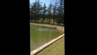 Moulin des oies-Bassin.mp4