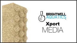 Brightwell Aquatics Xport Media