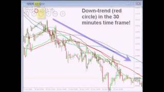 Hector Trader Review - Hector Trader Forex Trading Course