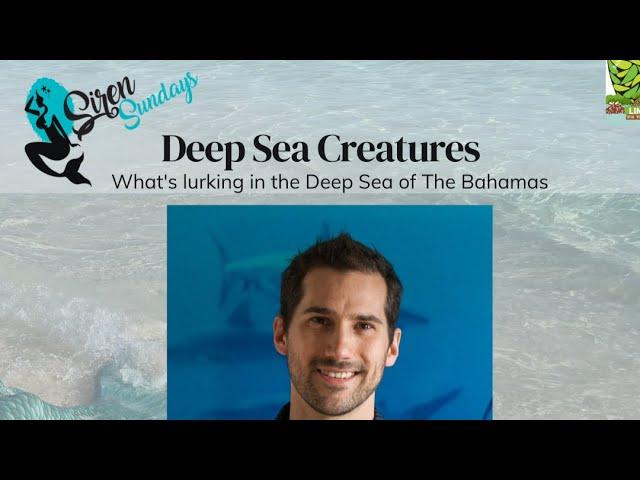 Siren Sundays (Season 4) - Episode 4: Deep Sea Creatures with Dr. Nicholas Higgs