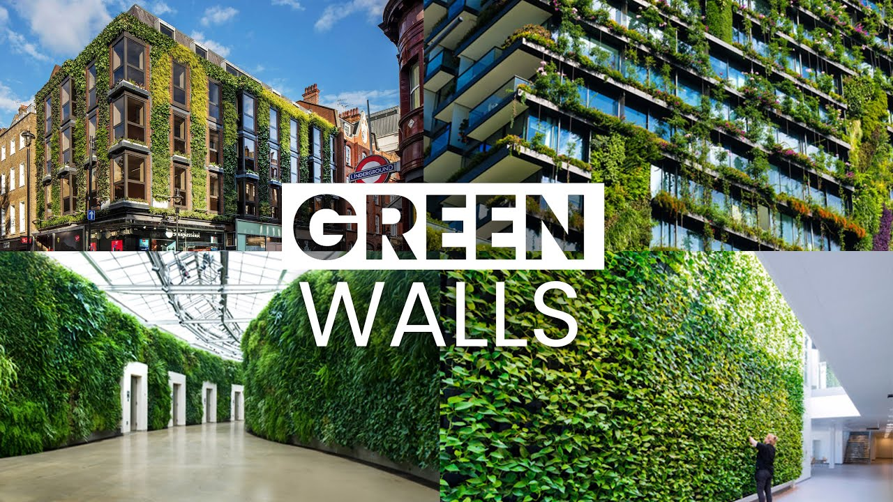 Best Green Wall Examples | What If All Walls In Our Cities Were Green?