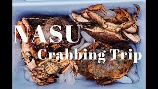 NASU | 抓螃蟹去咯!夏天的波士顿做一个快乐的渔民(Crabbing Trip)