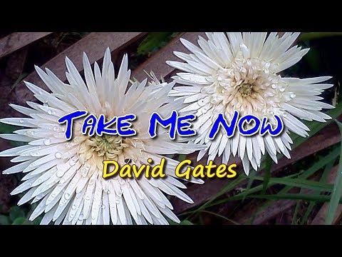 Take Me Now - KARAOKE
