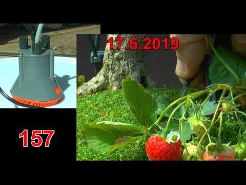gardena-bewässerung-im-zweiten-jahr-neu-installiert-und-erklärt-vom-gärtner