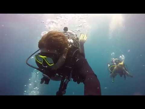 Diving In Coco Beach Costa Rica
